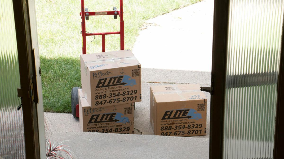 Elite Boxes